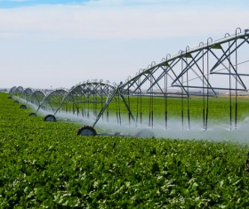 Field Irrigation System watering Stock Photo 04