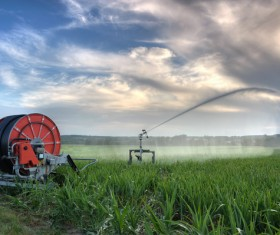 Field Irrigation System watering Stock Photo 05