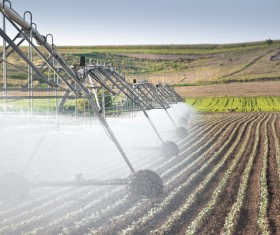 Field Irrigation System watering Stock Photo 06