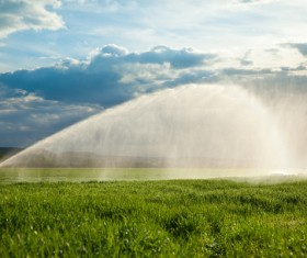 Field Irrigation System watering Stock Photo 07