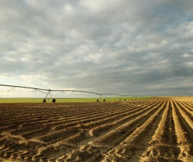 Field Irrigation System watering Stock Photo 08