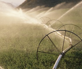 Field Irrigation System watering Stock Photo 10