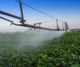 Field Irrigation System watering Stock Photo 12