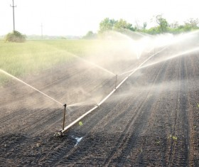 Field Irrigation System watering Stock Photo 15