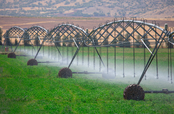 Field Irrigation System watering Stock Photo 17
