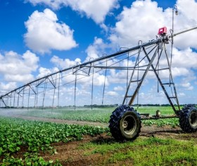 Field Irrigation System watering Stock Photo 18