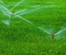 Field Irrigation System watering Stock Photo 23