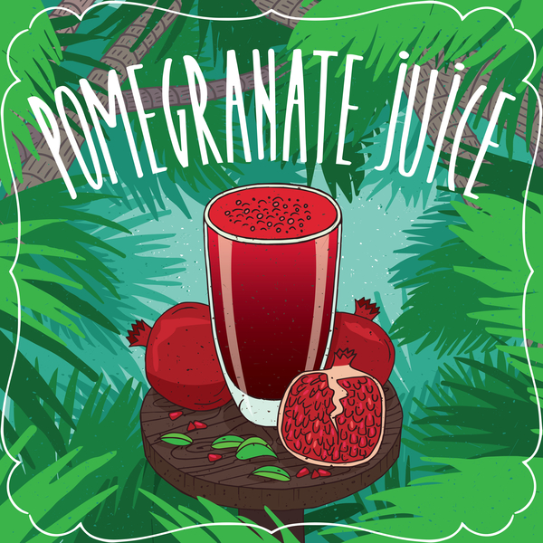 Fresh pomegranate juice poster vector