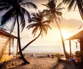 Goa island beach beautiful landscape Stock Photo 12