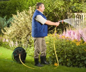 Man watering plant gardening Stock Photo 01