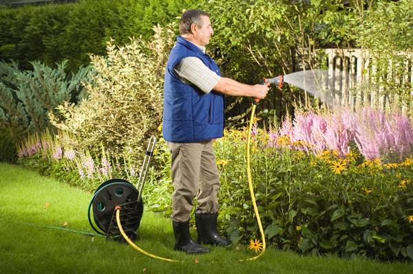 Man watering plant gardening Stock Photo 01