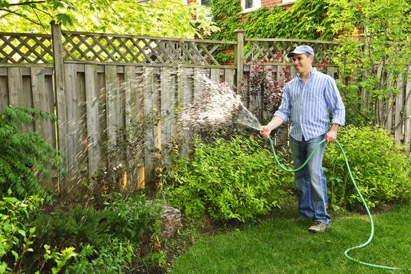Man watering plant gardening Stock Photo 03