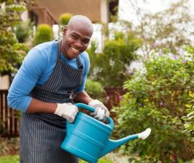 Man watering plant gardening Stock Photo 10