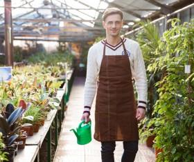 Man watering plant gardening Stock Photo 11