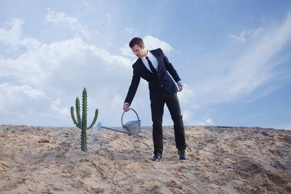 Man watering the cactus Stock Photo