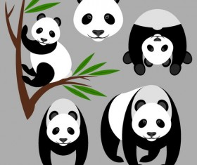 Panda and Bamboo vector