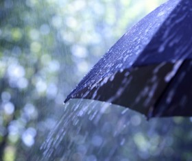 Rain umbrella Stock Photo 01