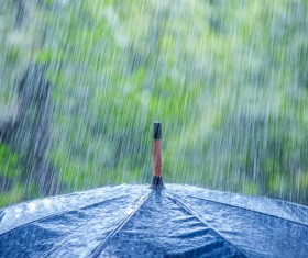 Rain umbrella Stock Photo 02
