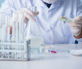 Scientists develop cells in the laboratory Stock Photo 04