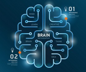 brain with lines infographic vector
