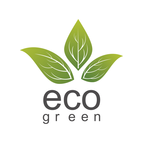Eco Green Leaf Logo Vector