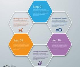hexagon infographic template design vector