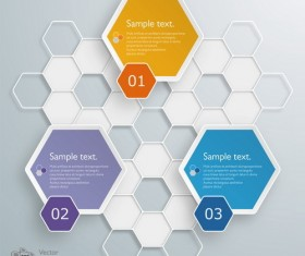 hexagon with paper infographic template vector 03