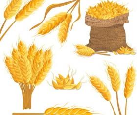 wheat illustration vector material 03