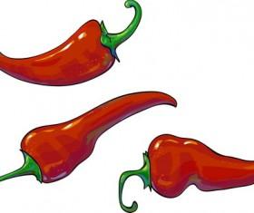 3 red pepper vector illustration