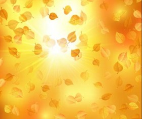 Autumn leaves with sunlight background vector