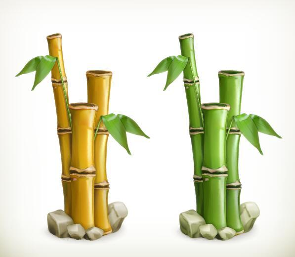 bamboo vector illustration free download bamboo vector illustration free download