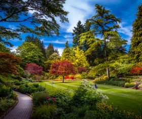 Beautiful city forest park Stock Photo