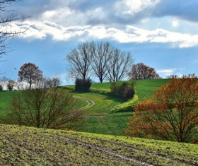 Beautiful suburban autumn landscape Stock Photo