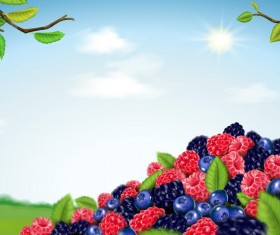 Berry blend background vector 02