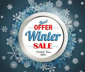 Best offer winter sale with snow frame vector
