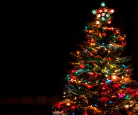 Bright Christmas tree at night Stock Photo