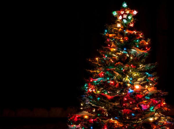 Bright Christmas tree at night Stock Photo