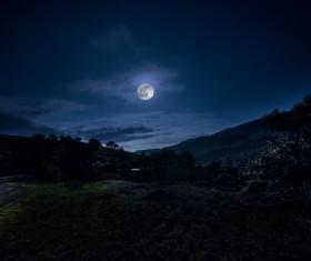 Bright moonlight at night Stock Photo 01