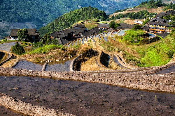 Chinese Guangxi Longji terrace Stock Photo