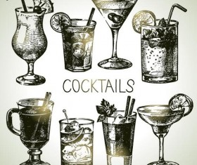 Cocktails hand drawn vector illustration set 02
