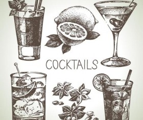 Cocktails hand drawn vector illustration set 03