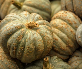 Different varieties of pumpkin Stock Photo 08