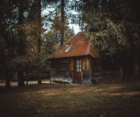 Log cabin in the forest Stock Photo