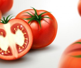 Realistic tomato with blurs background vector