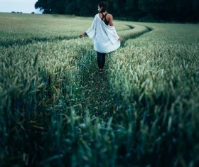 Walking in the green wheat field girl Stock Photo