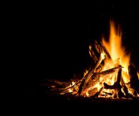 campfire Stock Photo 03