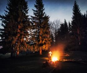 campfire Stock Photo 05