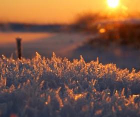 sunlight white snow Stock Photo