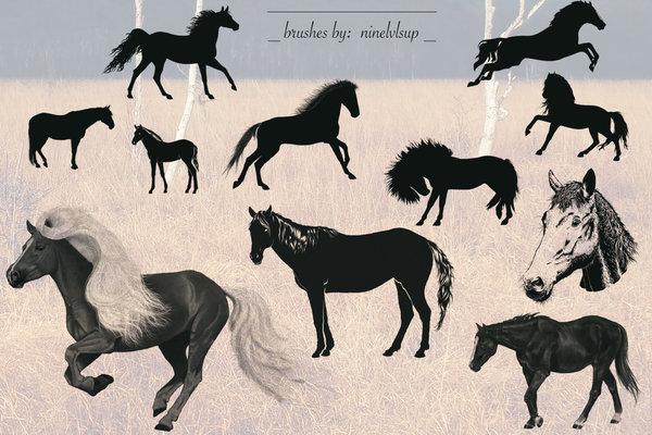 11 Kind Horse photoshop brushes