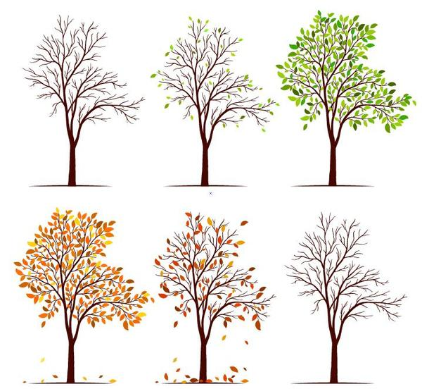 Abstract tree illustration vector set 02